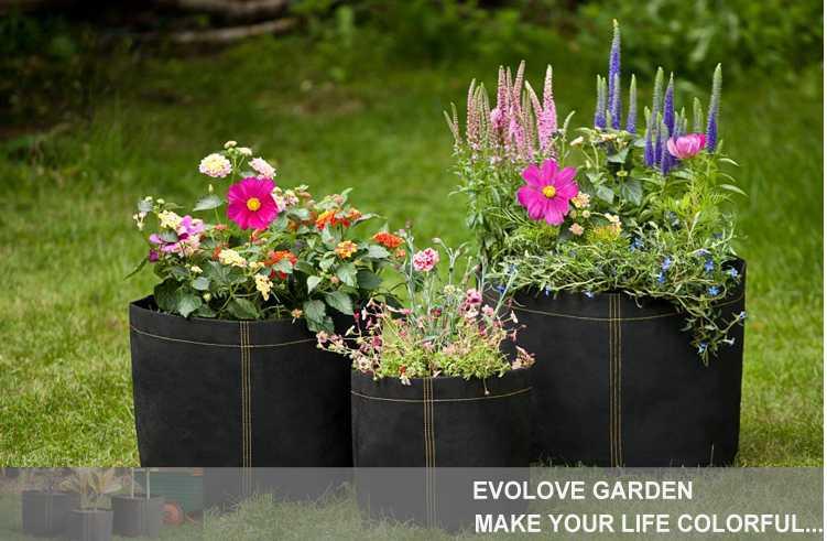 Plant pots 3 gallon