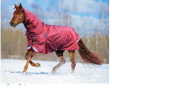 Hot Sale Waterproof horse rug for Winter