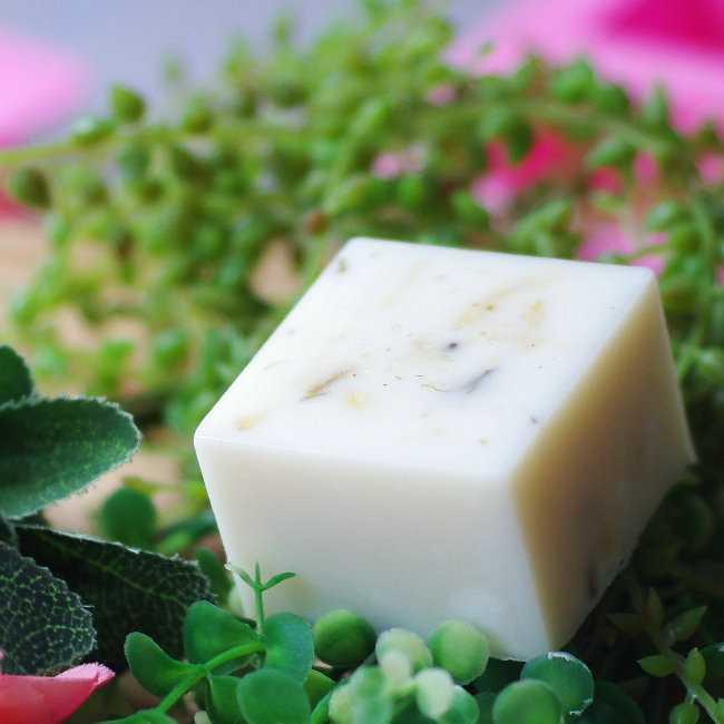 oil soap