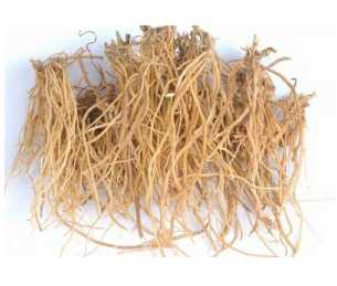 Chinese Gentian root