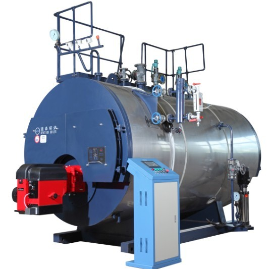 WNS Series Steam Boiler