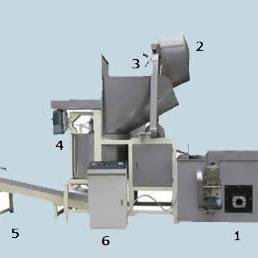 Automatic Batch Fryer