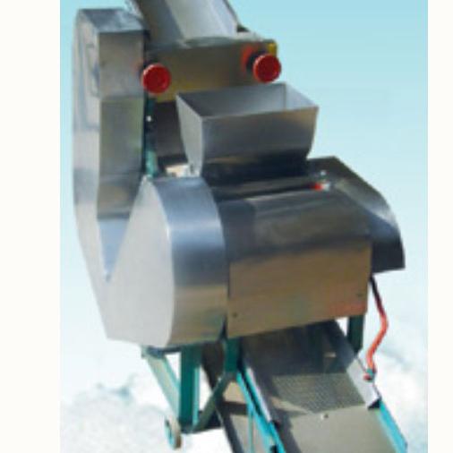 JMT-ZD Polished Glutinous Rice Strips Molding Machine