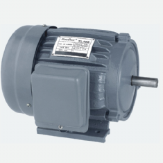 TL Series single-phase dual-capacitor electric motors