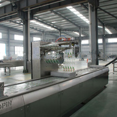vacuum thermoforming packaging machine: automatic and efficient