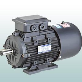 YEJ2、YDEJ2 Series electromagnetic brake three phase asynchronous motor