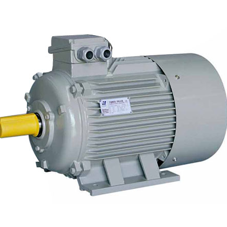 Y2 Cast iron IE2 IE3 ac motor