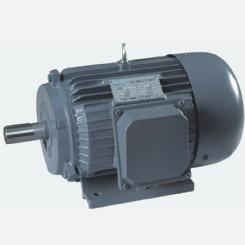 Y series three-phase electric motors
