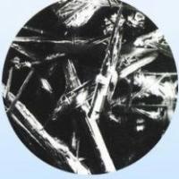 Needle silicon ash powder