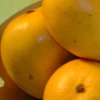 Alphanso Mango Puree
