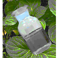 Additive Peppermint Oil 50%