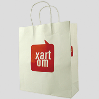 Shopping Printed Paper Bag gift bag