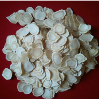 Dried Gingseng Piece