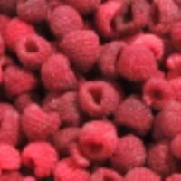 IQF Raspberry crumble