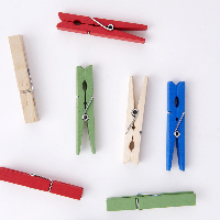 color craft wooden mini pegs