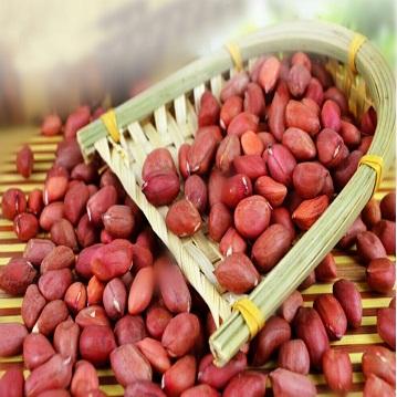 raw peanuts for sale