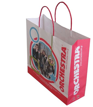 2014 new printed paper bag for clothes packaging