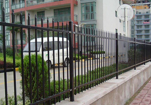 Beautiful Hot dipped zinc Steel Gate for garden