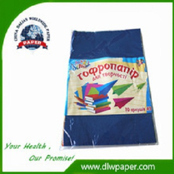 Customized Pack,Crepe Paper for children manual training,party use,Artificial Flower,10 colors