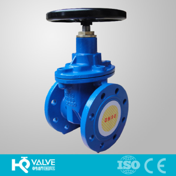 China NRS Rubber Gate Valve PN16 Manufacturer