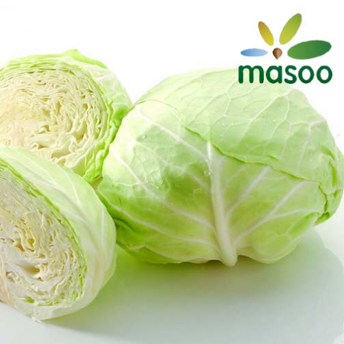 Cheap High Quality Fresh Cabbage From Hebei (China) (Wholesale)