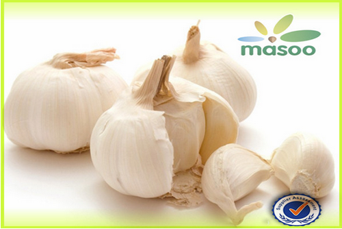 Cheap High Quality Fresh Garlic From Shandong (China) (Wholesale)