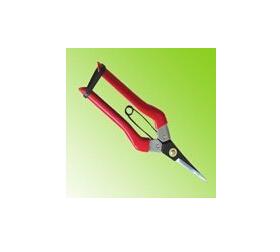 Fruit Scissors
