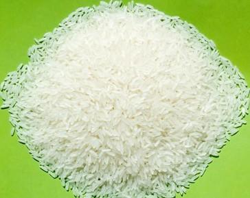 GR11 rice