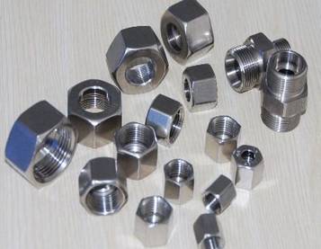 Stainless Steel Ferrule Fittings