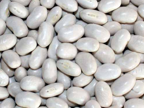 White Kidney Beans-Japanese Type