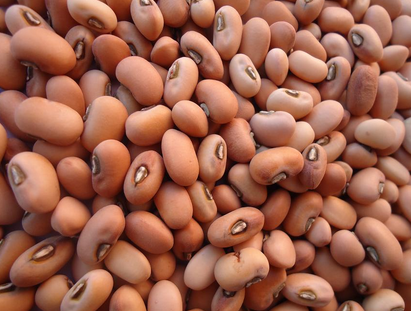 Pink Cowpeas