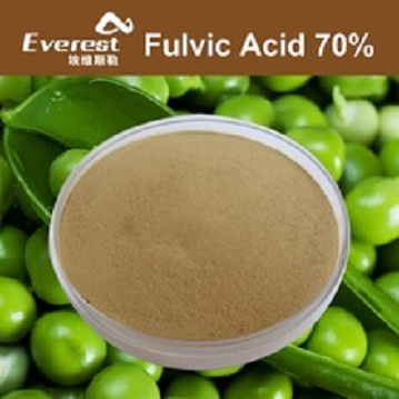 High Water Soluble Fulvic Acid 70 precent Powder