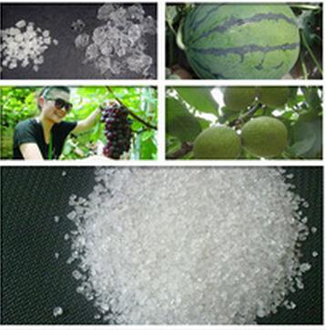 SAP gel crystals for soil moisture of fruit planting