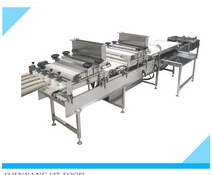 New style Stainless Steel Automatic Tray machine