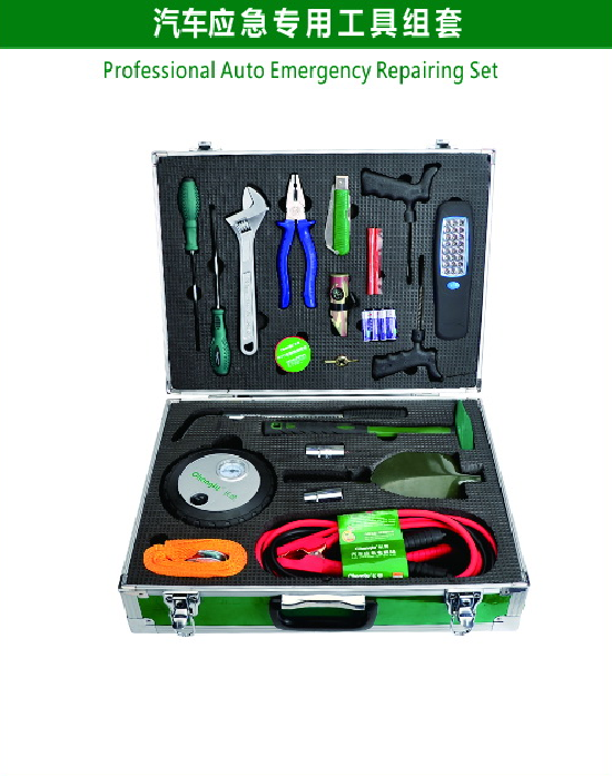 Professional Auto Emergency Repairing Set