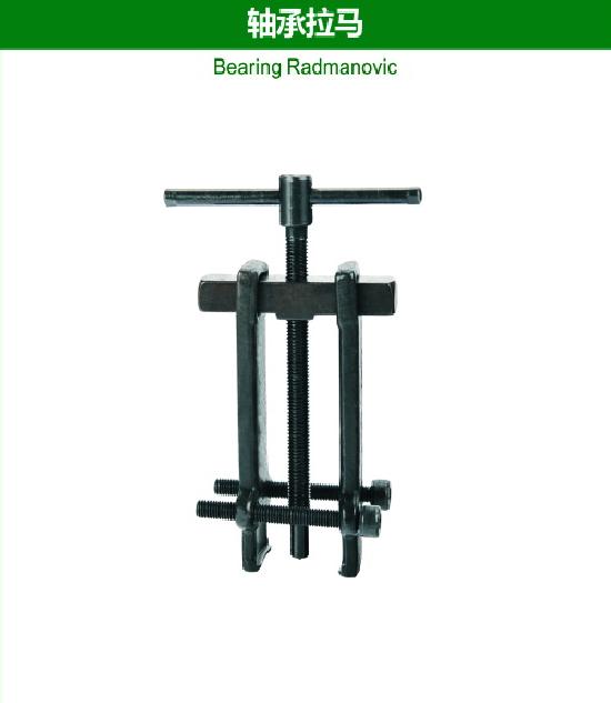 Bearing Radmanovic