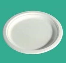 Upscale custom design disposable paper plate