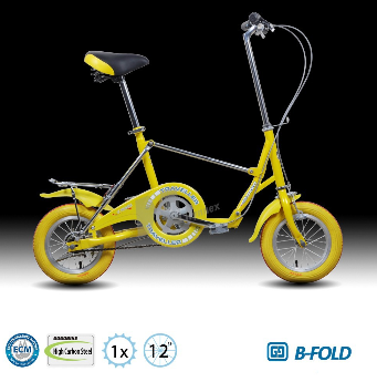Best selling 12 inch portable folding bicycle made in China
