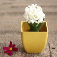 2015 bamboo fiber colorful square flowerpot /planter /container
