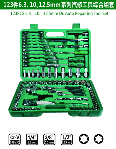 123PCS6.3/10/12.5mm Dr.Auto Repairing Tool Set
