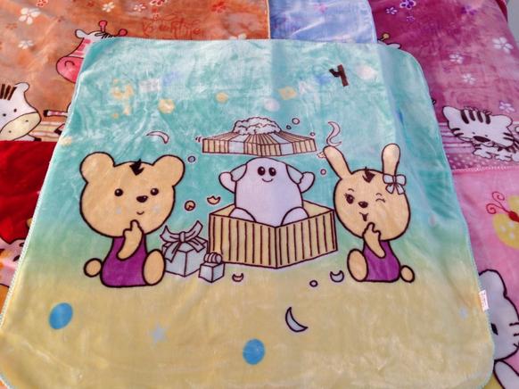 Best Price 100*120CM Mink Blanket China Supplier