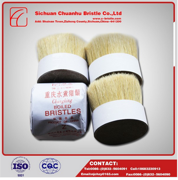 chungking white boiled bristle