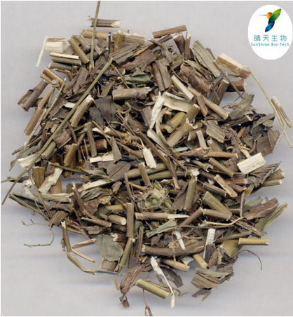 Natural Herbal Extract Bupleurum Sinensis Extract