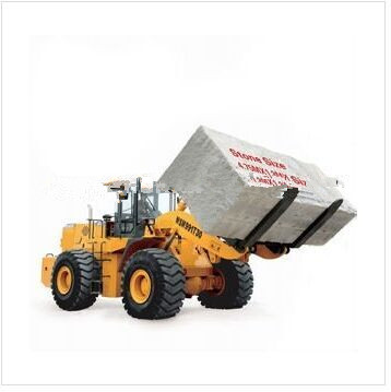 loading machine WSM991T30 fork loader