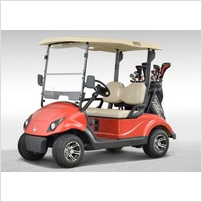 China best 2 seater electric club car golf cart whole sale