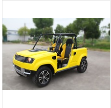 electric motorcycle sidecar golf buggy prices