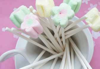Lolly White Paper Lollipop Sticks