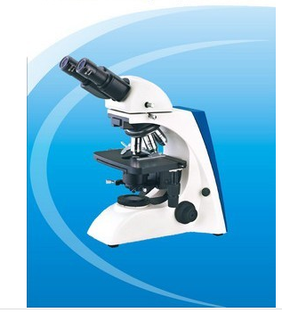 Biological Microscope with Seidentofp type Binocular Head