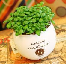 2016 porcelain flower pot fashion crafts