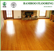 indoor bamboo flooring